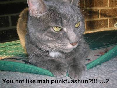 puncuationcat.jpg