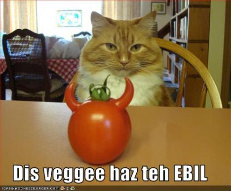 funny-pictures-cat-says-veggie-is-evil